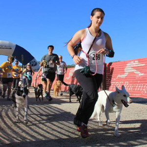 Mighty Dog 5K